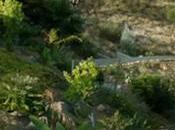 "Crónica Venecia 2013: ""The Canyons"" cuernos, orgías cines ruinas"