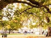 Tres buenas razones para visitar Dublín otoño invierno