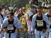 Marathon Medoc: carrera lenta mundo