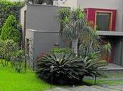 Caso ecoteva: alejandro toledo contactó agente inmobiliario