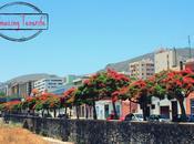 Callejeando Santa Cruz Tenerife