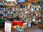 Tardes biblioteca