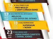Alternativas Concierto: DePedro, Bien Querida, Arizona Baby, Jorge Pardo, Melocos...