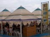 Ajedrez playa Calpe Torneo Biblioplaya