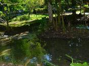 Naturaleza cubana: Rancho Querete