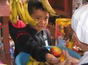 kioskos saludables llegan Chuquisaca (Bolivia)
