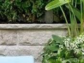 Razones Para Cultivar Jardineras Madera