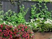 Cultivar Jardineras Madera