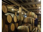 Viajes: Puertas abiertas fábrica cerveza Cantillon Bruselas( Bélgica)