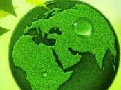 Mundial Alimentación: octubre 2013.