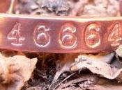 ¿Qué enseña número 46664?