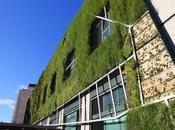Finalizando obra jardín vertical Palacio Congresos Vitoria-Gasteiz.
