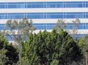 Cerberus podría buscar apoyo Qualcomm para comprar BlackBerry