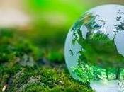 Cuidar planeta donde vivimos tarea todos
