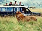 """África: turismo, menos dinero"""""""