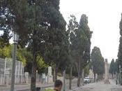Camino Santiago Catalunya. Tarragona Santes Creus