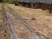 Consorcio Azucrero Central repara férrea.