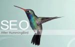 Guía para Google Hummingbird