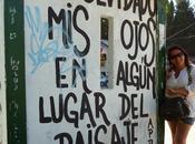 LAGO PUELO, BARILOCHE, MARTIN ANDES SOLO CUATRO IMAGENES CAMINATAS ETERNAS falta mucho