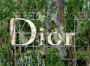 Dior sigue caída libre madriguera no...???