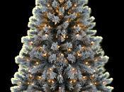 gran árbol invisibles