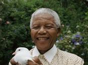 madiba homenaje grande NELSON MANDELA
