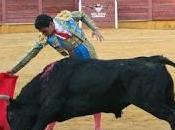 montera premia dorado como autor mejor faena 2013 plazas provincia