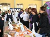 Instituto sagrada familia realizó novena muestra saludable