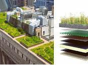 Curso Cubiertas Vegetales para Edificación Sustentable
