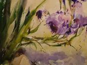 Selección acuarelas flores Flowers watercolors