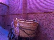 mirada medina Marrakech