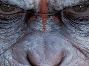 'Planet Apes consigue fecha estreno