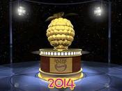 Lista nominados Razzie Awards 2014
