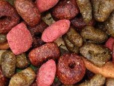 Vitaminas minerales esenciales para perros