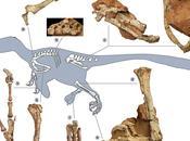 """dinosaurio """"dragón robusto"""" aterrorizó Europa Cretácico Superior"""