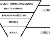 Capitalismo: sistema cabeza (III)