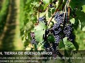 Aragón, tierra buenos vinos Vino relax