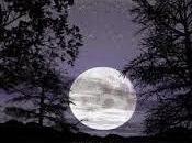 poesía rafael simarro noche blanco granada