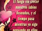 Palabras Lindas Amor Frases Cortas