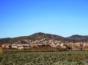 Gavá Sant Ramón Climent 02/02/2014