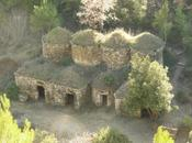 Tinas vinya. recuperación patrimonio histórico vinícola