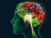 Como entrenar cerebro: nutrición cerebral