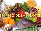 mejores alimentos proteínas para construcción músculo