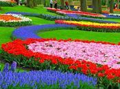Jardínes bellos Planeta