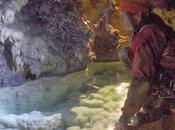 Nuevas especies descubiertas cuevas Andalucía
