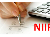 Normas Internacionales Información Financiera (NIIF)