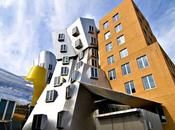 Stata Center Frank Gehry