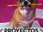 #proyectos Isi: amoroso