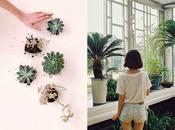 last obsession: Plants