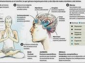 Estudios prueban yoga mejora salud mental
